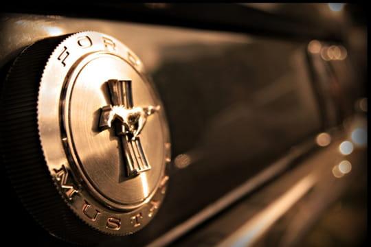 Auto : Les plus belles photos d'automobile des Internautes Mustang-plein-d-aventure-1027318