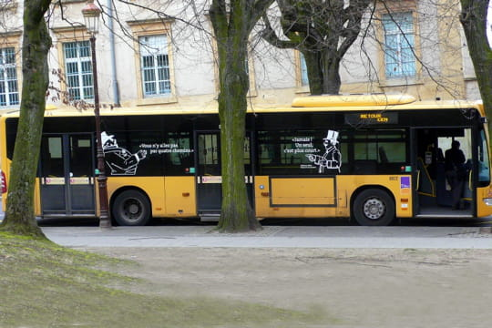 Auto : Voitures insolites Droit-but-885647