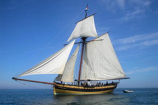 bateau du monde Renard-495732
