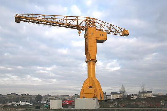Beeeeeelle, beeeeelle Grue-titan-jaune-239404