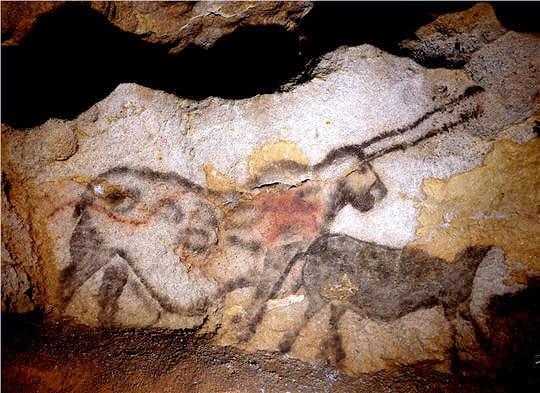 Grotte de Lascaux Lascaux-licorne-645030