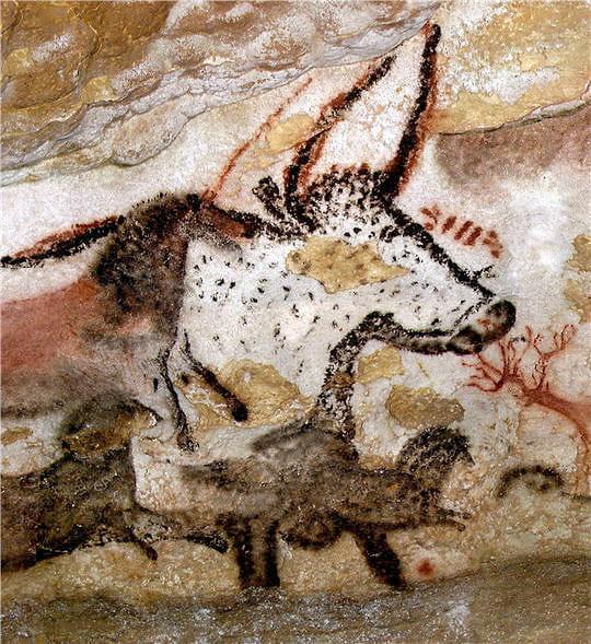 Grotte de Lascaux Premier-taureau-lascaux-645058
