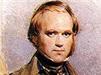 نظرية التطور -شارل داروين Darwin