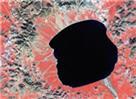 Un autre regard sur la planète Terre Sat4