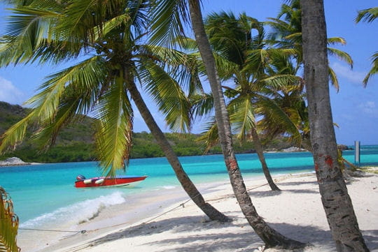 joyeux anniversaire emmeraude Iles-grenadines-374859