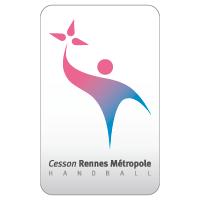 Simulation de Handball 20132014__cesson-rennes__large