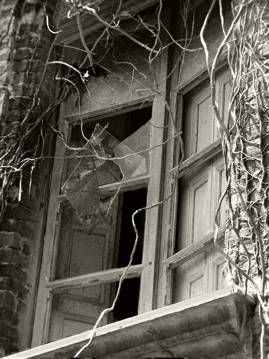 Prozori koji govore - Page 2 15-finestra-1574-bn-700-70