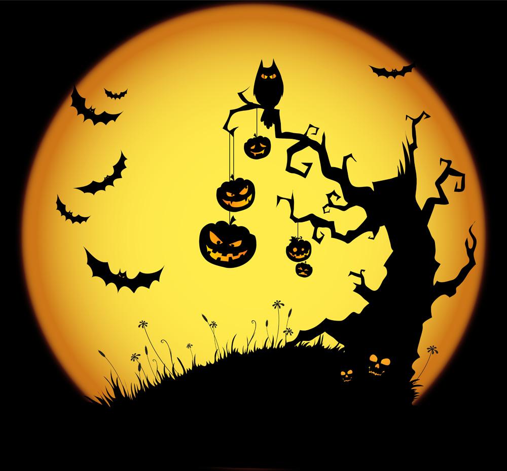 I Concurso de Gritos de Terror - Halloween 2014 Halloween-canarias-2013-4