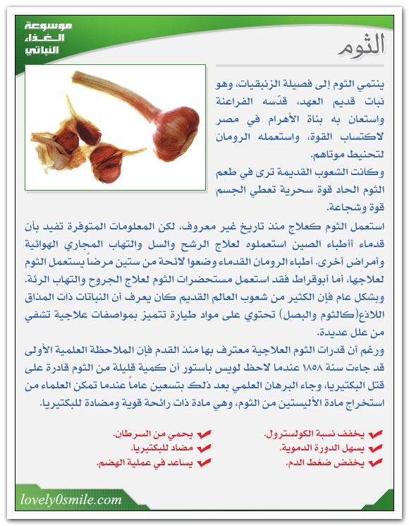 بعض النباتات الطبية Fo-035