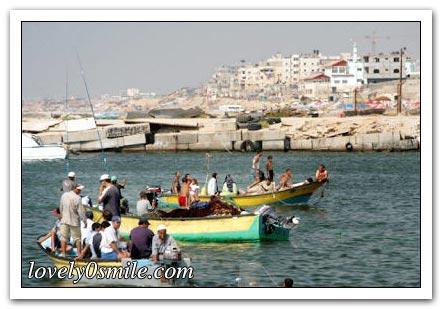 فلسطين إسطورة يكتبها التاريخ 031