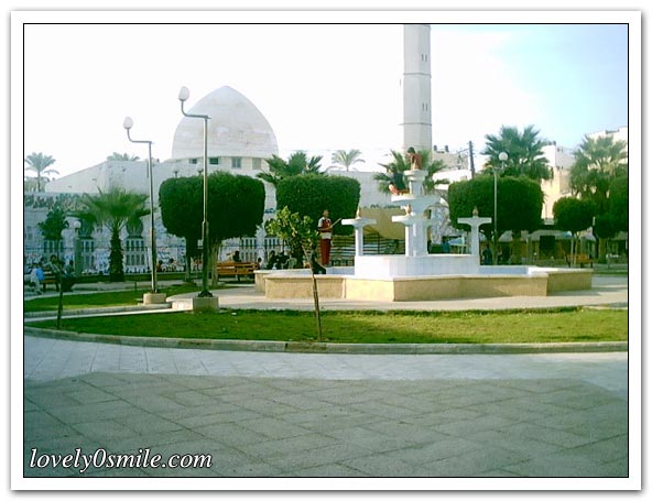موسوعة الصور لفلسطين الحبيبة 038
