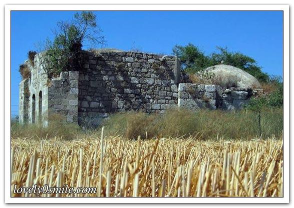 موسوعة الصور لفلسطين الحبيبة 040