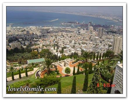 فلسطين إسطورة يكتبها التاريخ 050