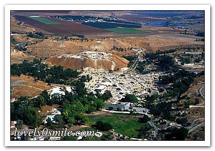 فلسطين إسطورة يكتبها التاريخ 062