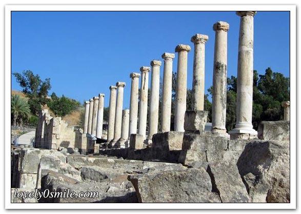 فلسطين إسطورة يكتبها التاريخ 064