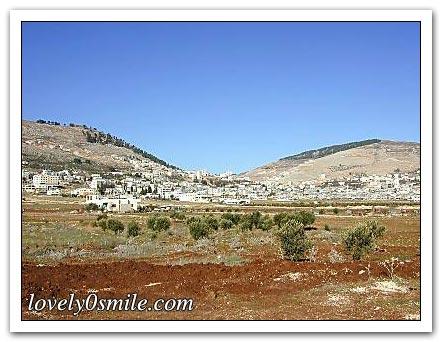 فلسطين إسطورة يكتبها التاريخ 068