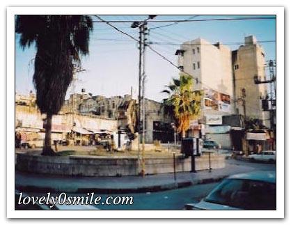 موسوعة الصور لفلسطين الحبيبة 073