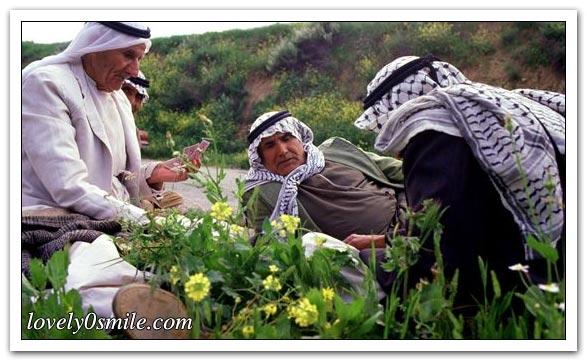 موسوعة الصور لفلسطين الحبيبة 074