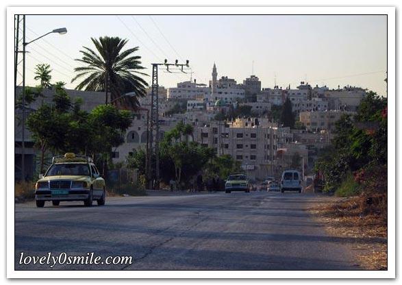 موسوعة الصور لفلسطين الحبيبة 075