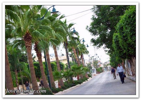 موسوعة الصور لفلسطين الحبيبة 076