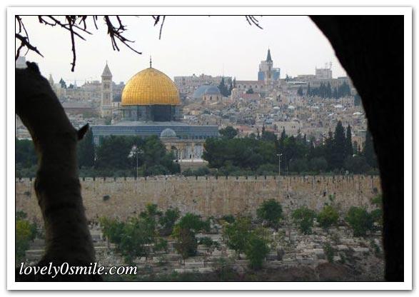 موسوعة الصور لفلسطين الحبيبة 083