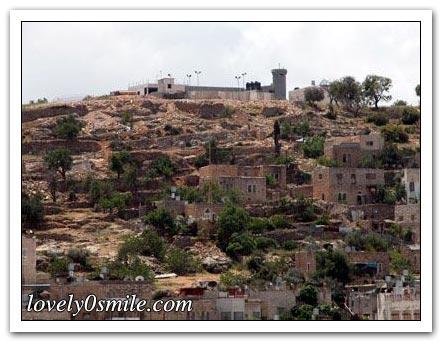 موسوعة الصور لفلسطين الحبيبة 088