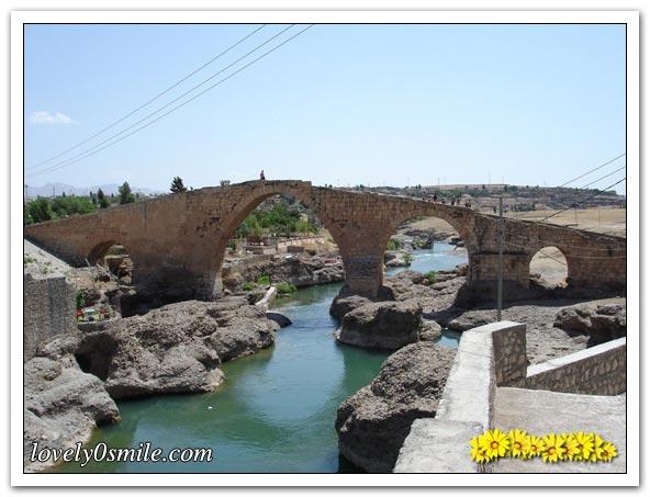 صور من تاريخ العراق 469