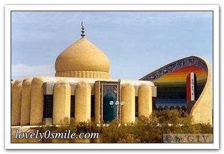 صور من تاريخ العراق 479