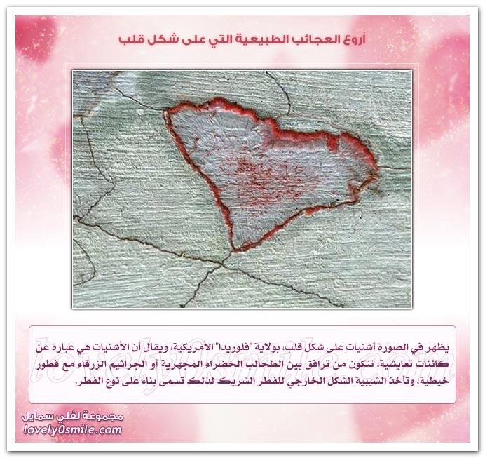 أروع العجائب الطبيعية التي على شكل قلب AmazingHeart-06