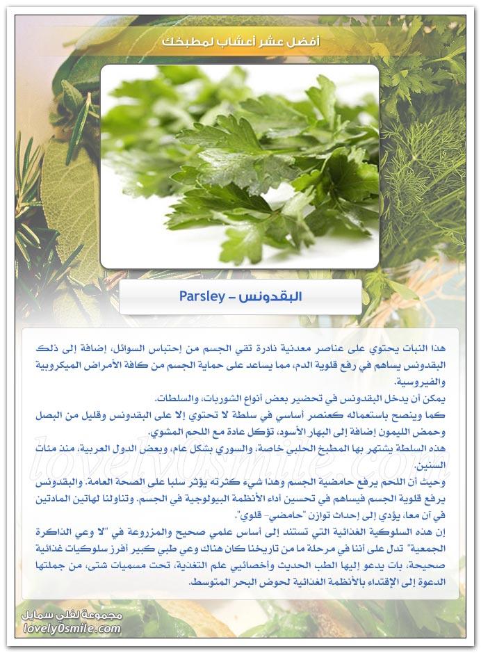 أفضل عشر أعشاب لمطبخك TopHerbsForYourKitchen-06
