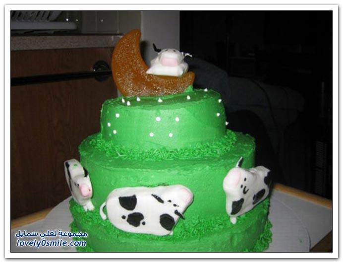 الكيك اشكال والوان...شاهد Cake-forms-and-colors-037