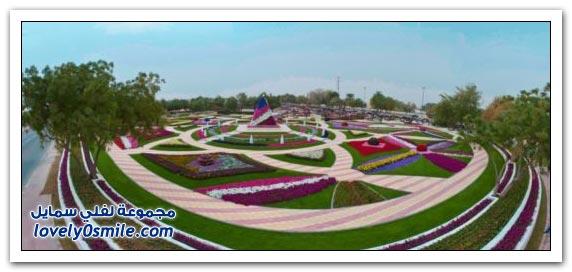 حديقة العين بارادايس في الإمارات التي دخلت موسوعة غينيس Hanging_flowers_03