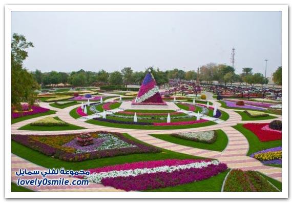 حديقة العين بارادايس في الإمارات التي دخلت موسوعة غينيس Hanging_flowers_04