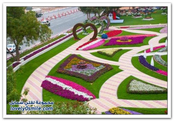 حديقة العين بارادايس في الإمارات التي دخلت موسوعة غينيس Hanging_flowers_06