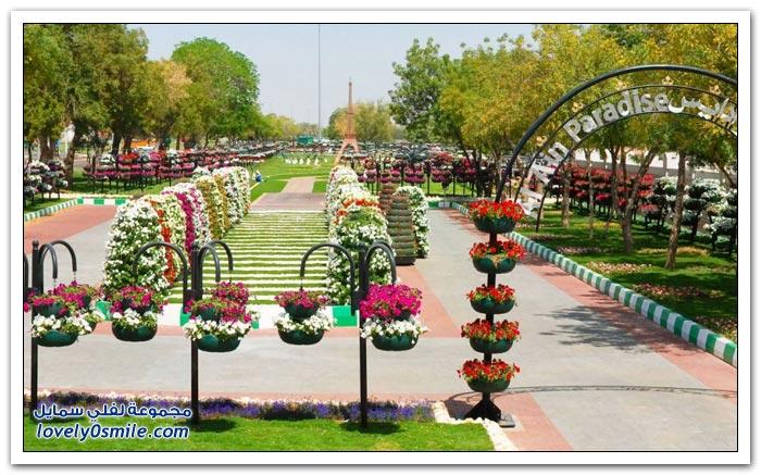 حديقة العين بارادايس في الإمارات التي دخلت موسوعة غينيس Hanging_flowers_23