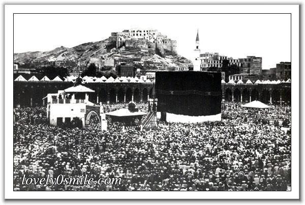 سياحة ابعادها روحية جمالية ثقافية بالمملكة السعودية ~ تحت رعاية (اوبريت عاش العرب)-للأخ CS01 005