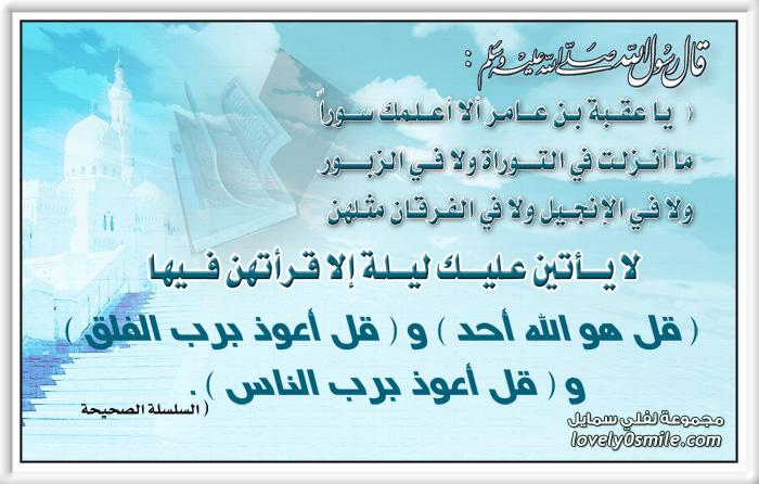 العقد الفريد لأبي عمر احمد بن محمد بن عبدربه كتاب الكتروني اكثر من رائع 263