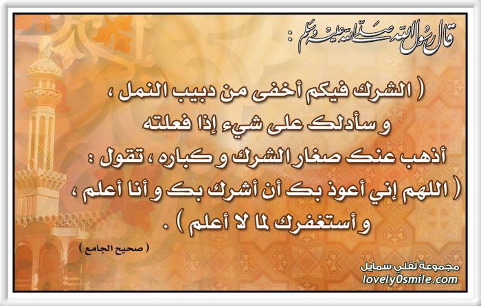 المفصل في تاريخ العرب قبل الإسلام 268