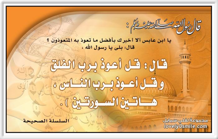برنامج رواة الحديث منقول من موقع قاعدة بيانات الإسلام 290