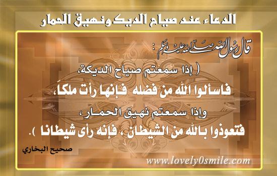 موسوعة البطاقات الإسلامية 027