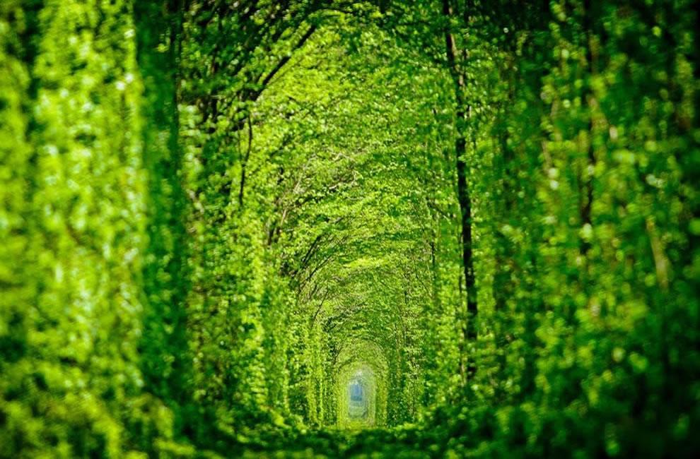 Zanimljivi putevi, staze, ceste Tunnel-of-love-aka-green-mile-Kleven-train-tunnel