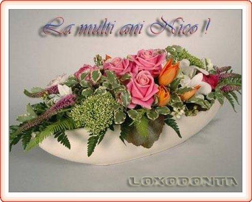 La multi ani Nico- 15 septembrie La_multi_ani_nico_4076