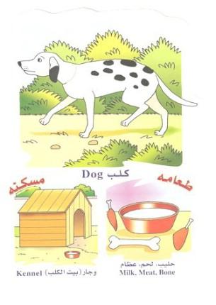 الحيوانات بالعربي والانجليزي  0514101805070wsex52d1xdoxvs