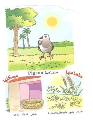 الحيوانات بالعربي والانجليزي  051410180507aeg5c3zsmonipyld