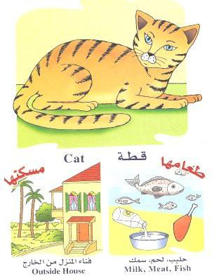 الحيوانات بالعربي والانجليزي  051410180507chv4zjfslcv0