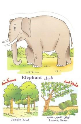 الحيوانات بالعربي والانجليزي  051410180507qz1fm4t7vvvzcslmt