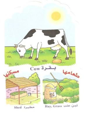 الحيوانات بالعربي والانجليزي  051410180507rf7jpxajayazfy9q7