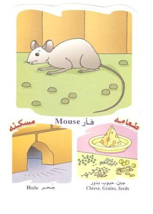 الحيوانات بالعربي والانجليزي  051410180507tekkj3g6i5g