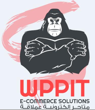 قصة نجاح موقع wppit.com 15670029391