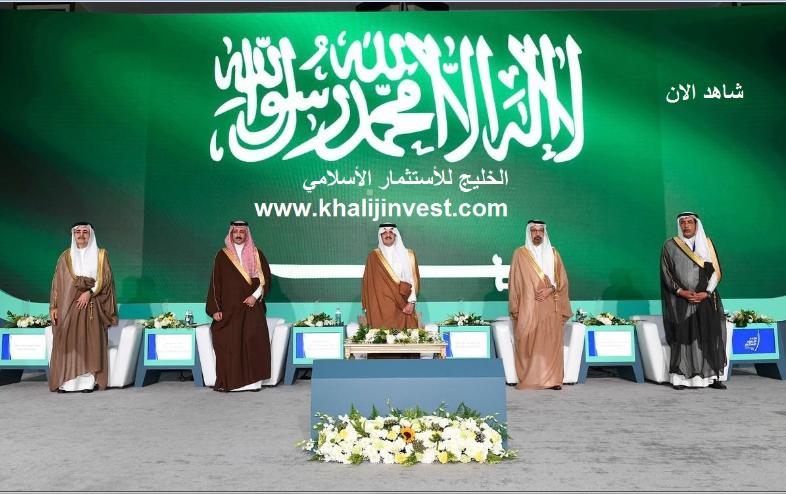 برنامج الاستثمار الخليجي يدعم صغار المستثمرين 15672366031